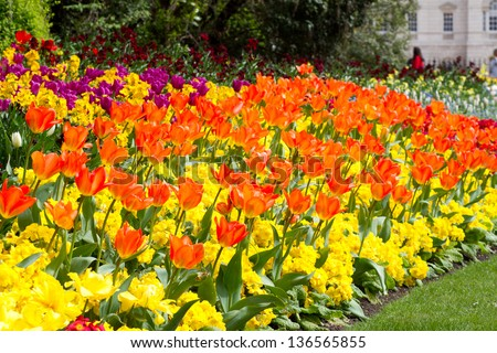Variety bright spring flowers bloom english stock photo edit now a variety of bright spring flowers bloom in an english country garden mightylinksfo