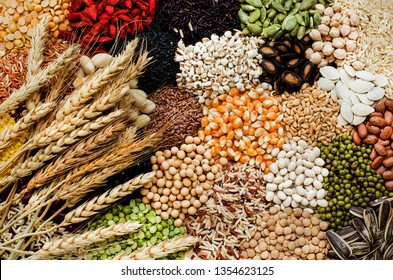 Variety of cereal food consisted of corn,flax seed,small white bean,pumpkin,watermelon,sunflower,soybean,peanut,pinto,garbanzo,goji berry,rice,and job's tear,with dry wheat,in low key and brown tone