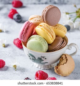 Variety of colorful french sweet dessert macaron macaroons with different fillings served in vintage tea cup with spring flowers and fresh berries over gray texture background. Square image