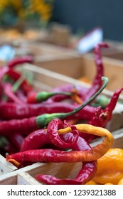 Variety of colourful sweet and chili peppers on sale at Eataly up-scale food market in Turin, Italy.