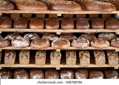 Variety of delicious breads displayed on shelves in bakery
