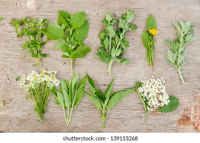 Variety of fresh herbs on old wooden background