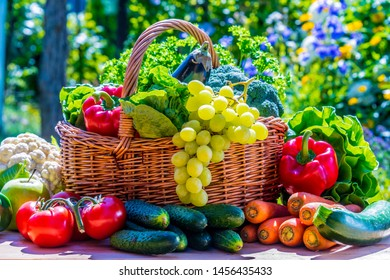 Variety of fresh organic vegetables and fruits in the garden. Balanced diet