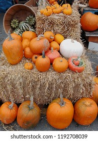 Variety of fresh picked pumpkins on bales of hay at market stall, ready to be carved into your favorite Halloween design or chopped and diced for a Thanksgiving pie