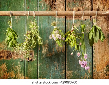 A variety of freshly picked culinary herbs hanging in bunches on a rustic wood background including chives, tarragon, mint, oregano, thyme, rosemary and sage