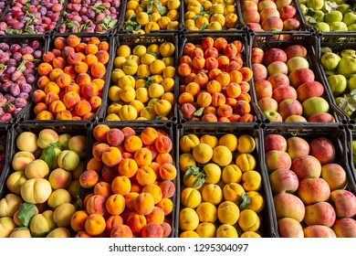 Variety of fruits in the market