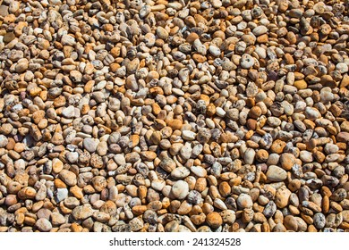 Variety of gravel decorated on ground in garden