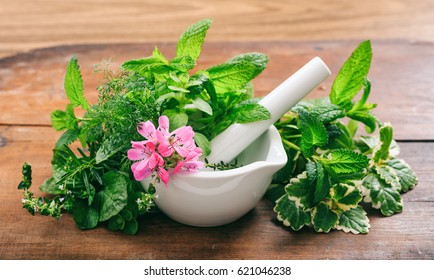 Variety of herbs in a mortar on wooden background