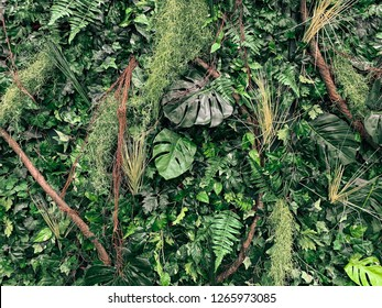 A variety of leaves, Monstera, trees, moss and branches in various colors and shapes.