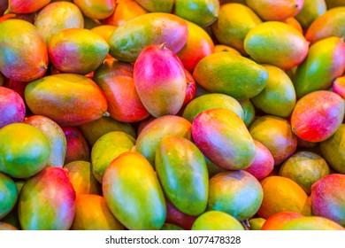 Variety of Mango Fruits Placed Bulk at the Market Storefront.Horizontal Image