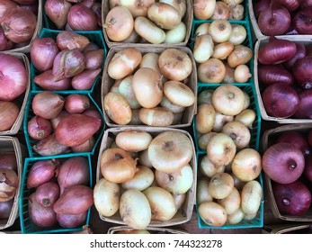 Variety of Onions at Farmers' Market