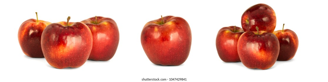 Variety of ripe red apples Malus domestica 'Jonagold' isolate white background. Procurement under the inscription and illustration