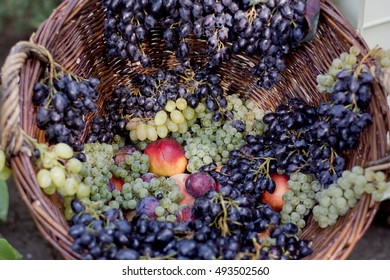 Variety sort of fresh grape, peach, plum in big basket closeup
