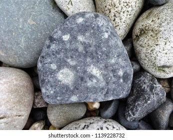 A variety of volcanic cobble stones on the beach in the Pacific Northwest