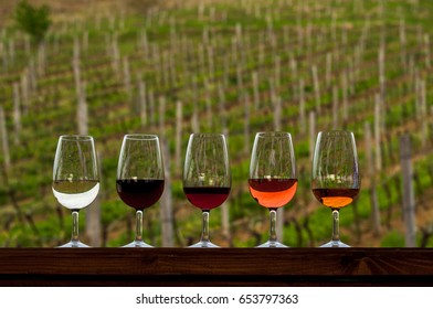 variety wine in glasses on a background of growing grapes on wodden barrel. Includes red, white, and rose.