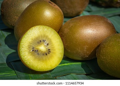variety of yellow kiwi in close-up