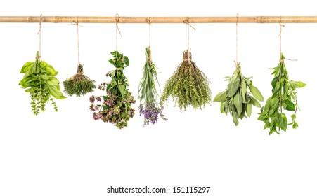 varios fresh herbs hanging isolated on white background. bundle of basil, sage, thyme, mint, marjoram, lavender