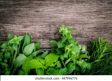 Various aromatic herbs and spices from garden  green mint ,fennel ,rosemary,oregano, sage,lemon thyme and peppermint set up on old wooden background .
