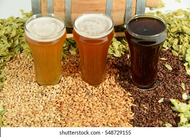 Various beer styles from lager, amber ale and stout in front of miniature beer barrel surrounded by beer ingredients of malted barley grain and hops