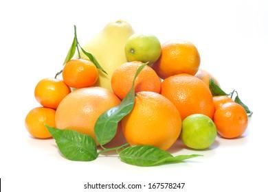 Various citrus fruits against white background.