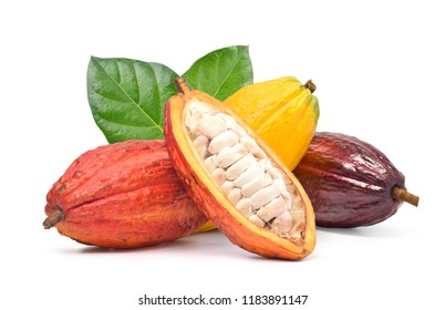 Various of Fresh cocoa fruits with half sliced and green leaf isolated on white background