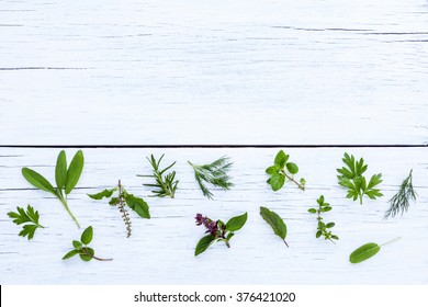 Various fresh herbs from the garden holy basil flower, basil flower,rosemary,oregano, sage,parsley ,thyme and dill over white wooden background.