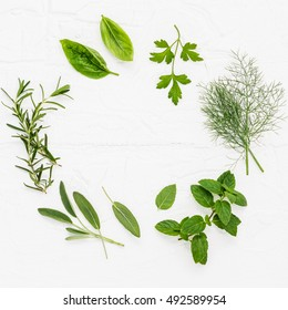 Various fresh herbs from the garden peppermint , sweet basil ,rosemary,fennel, sage and lemon thyme on white wooden background with flat lay and copy space.