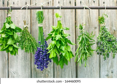 Various fresh herbs hanging in bundle on a rod to dry
