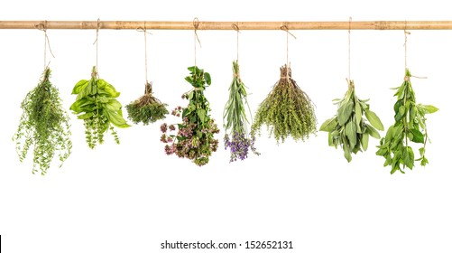 various fresh herbs hanging isolated on white background. bundle of basil, sage, thyme, mint, marjoram, lavender