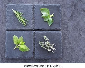 Various fresh herbs on dark background. Thyme, basil, mint and rosemary. Overhead shot.