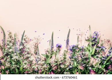 Various herbs and flowers on pink pale background, top view, floral border
