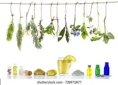 Various ingrdient s . Preparing medicinal plants for phytotherapyand healthbeauty alternative medicine promotion on old wall