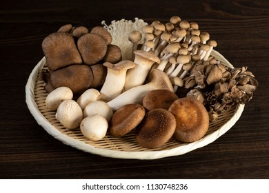 Various kinds of mushrooms