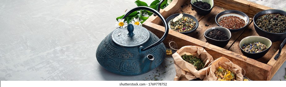 Various kinds of tea. Panorama, banner with copy space