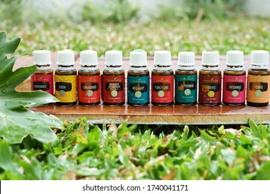various kinds of young living essential oil