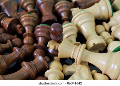 Various light and dark wooden chess pieces.