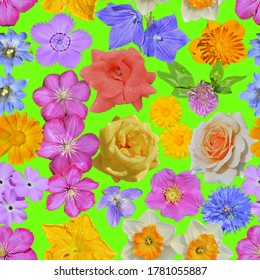 The various many-colored wild and cultivated flowers. Seamless pattern on green background.