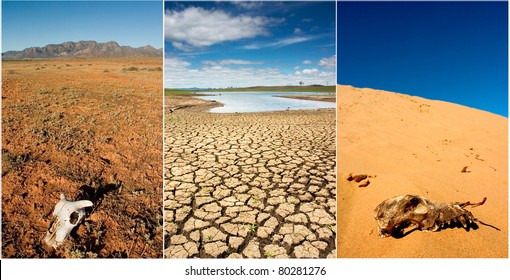 Various photos of drought in Australia