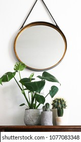 Various plants standing on vintage wooden sideboard and a round mirror with a leather hanging strap above it
