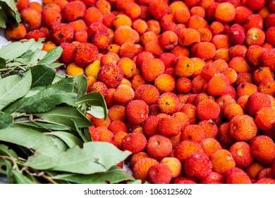 various sands fruit