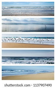 Various seascape on a summer collage