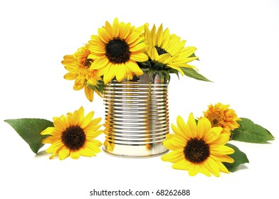 Various sunflower blossoms in a recycling tin can