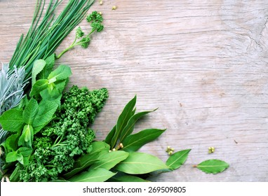 various types of aromatic herbs