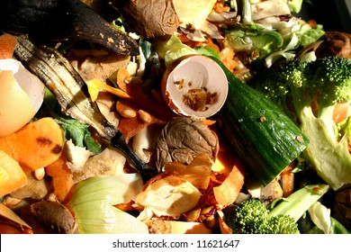 Various vegetable peelings, food and other waste for conceptual use.