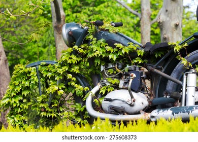 Varna, Bulgaria April 24, 2015 Retro motorcycle exhibition overgrown with ivy. Since the nature of technological change displaces.