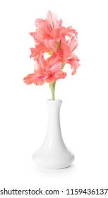 Vase with beautiful gladiolus flowers on white background