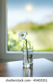 vase with a flower with the sun in the background