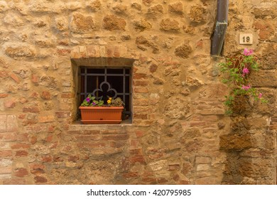 vase with flowers in the window