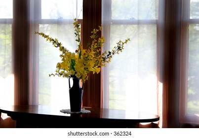 vase o flowers by curtained windows