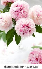 Vase of peony blooms